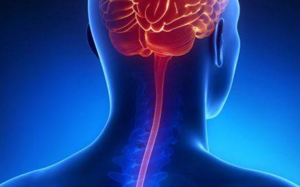 meningites 436x272 - Meningite: Conhecendo a doença