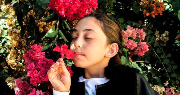 primavera e criança alérgica 720x380 - Criança alérgica x Primavera: que cuidado os pais devem tomar!
