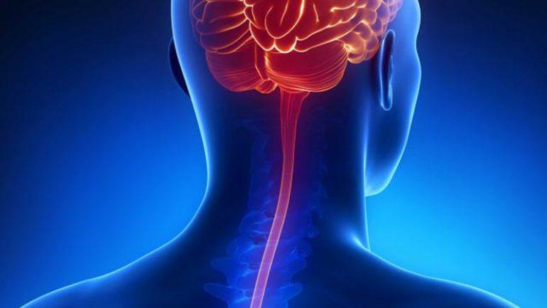 meningite e1551479084817 - Dúvidas sobre vacinas contra meningites